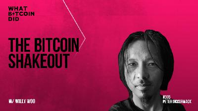 The Bitcoin Shakeout - Jan '21 Trading Update with Willy Woo