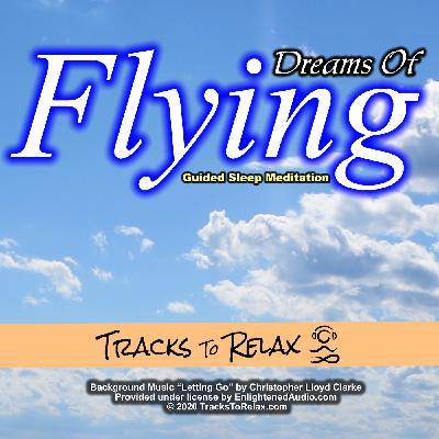 Dreams Of Flying Sleep Meditation