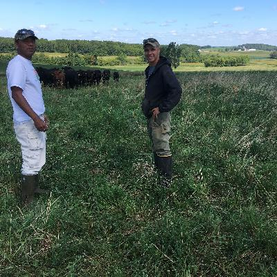 Stories on Pasture: Serge Koenig shares about a shift to grazing happening in Sauk County