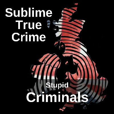 11: Ep 11 - Stupid criminals