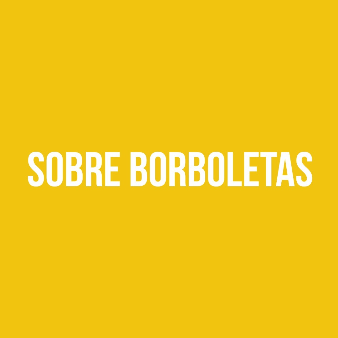BANANA DA TERRA 002 - SOBRE BORBOLETAS