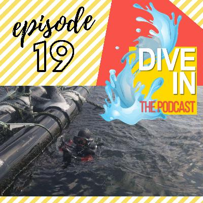 "Episode 19: ""What Are You Doing?... Get Back to Diving!"""