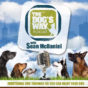 Session 96: Interview with Vermont Dog Trainer Ian Grant