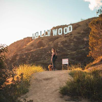 Franquicias de Hollywood