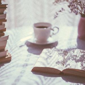 391 - Foster falando português e uma ótima recomendação de livro!
