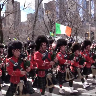 セント・パトリックス・デー Saint Patrick's Day in NYC