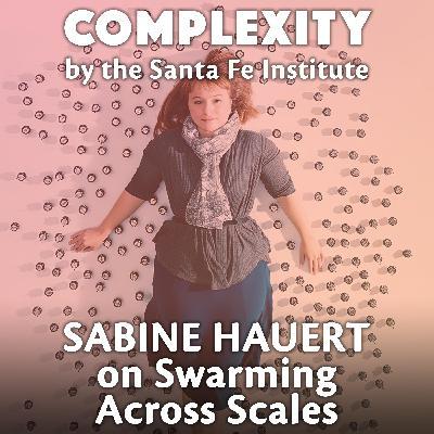 Sabine Hauert on Swarming Across Scales