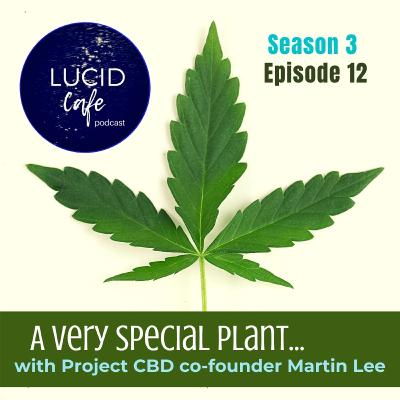 A Very Special Plant....with Project CBD co-founder Martin Lee