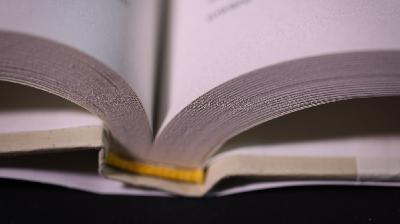 2020 Best Books: Love Stories