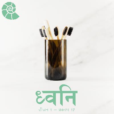 1.17 Socho - Sustainability kyun? [Hindi]