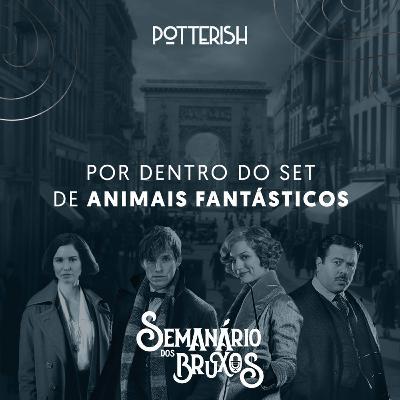 #9: Por dentro do set de Animais Fantásticos, com Aline Diniz e Patrícia Gomes