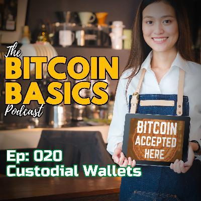 Bitcoin Basics Podcast: Bitcoin Wallets #2 What are custodial wallets? (020)