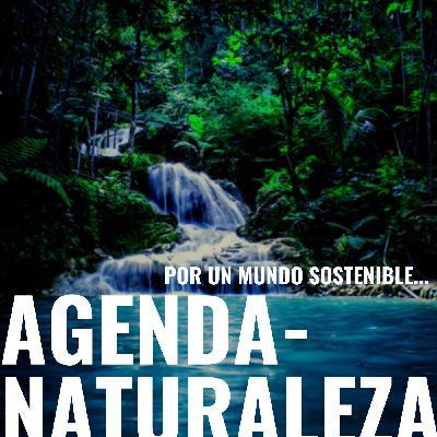 140. La Agricultura urbana en Argentina.