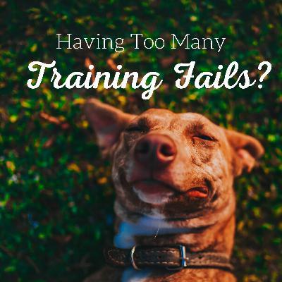 Having Too Many Training Fails?