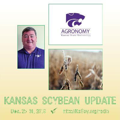 Soybean Schools