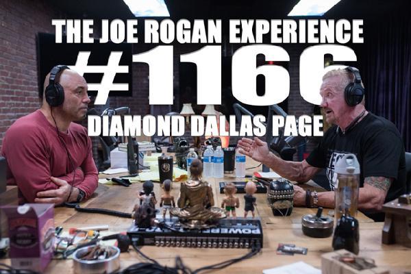 #1166 - Diamond Dallas Page