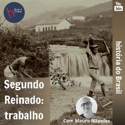 Segundo Reinado: trabalho – História do Brasil (aula 17)