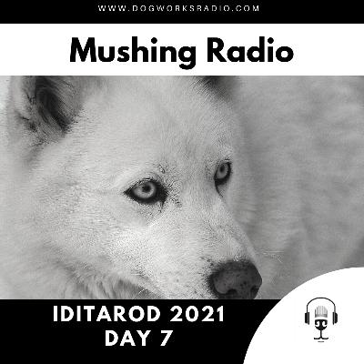 Iditarod 2021 Daily Coverage | Day 7