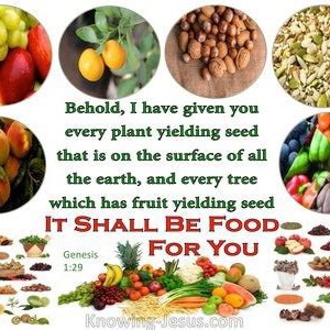 YDI-210922_Biblical Nutrition, Cancer testimonies.and more
