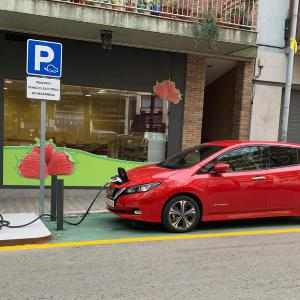 Electric vehicle cross border driving - Or not?