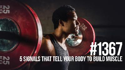 1367: The 5 Most Powerful Signals That Tell Your Body to Build Muscle
