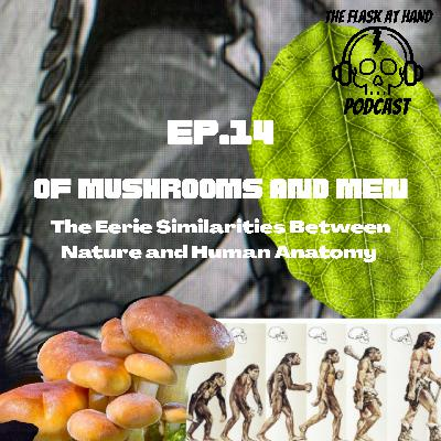 Ep.14: Of Mushrooms And Men- The Eerie Similarities Between Nature and Human Anatomy