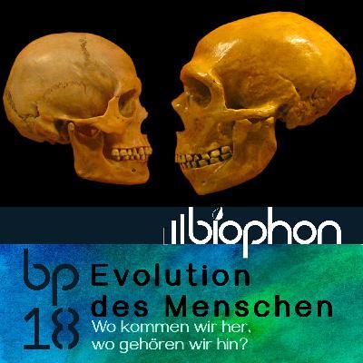 bp18: Evolution des Menschen - Wo kommen wir her, wo gehören wir hin?