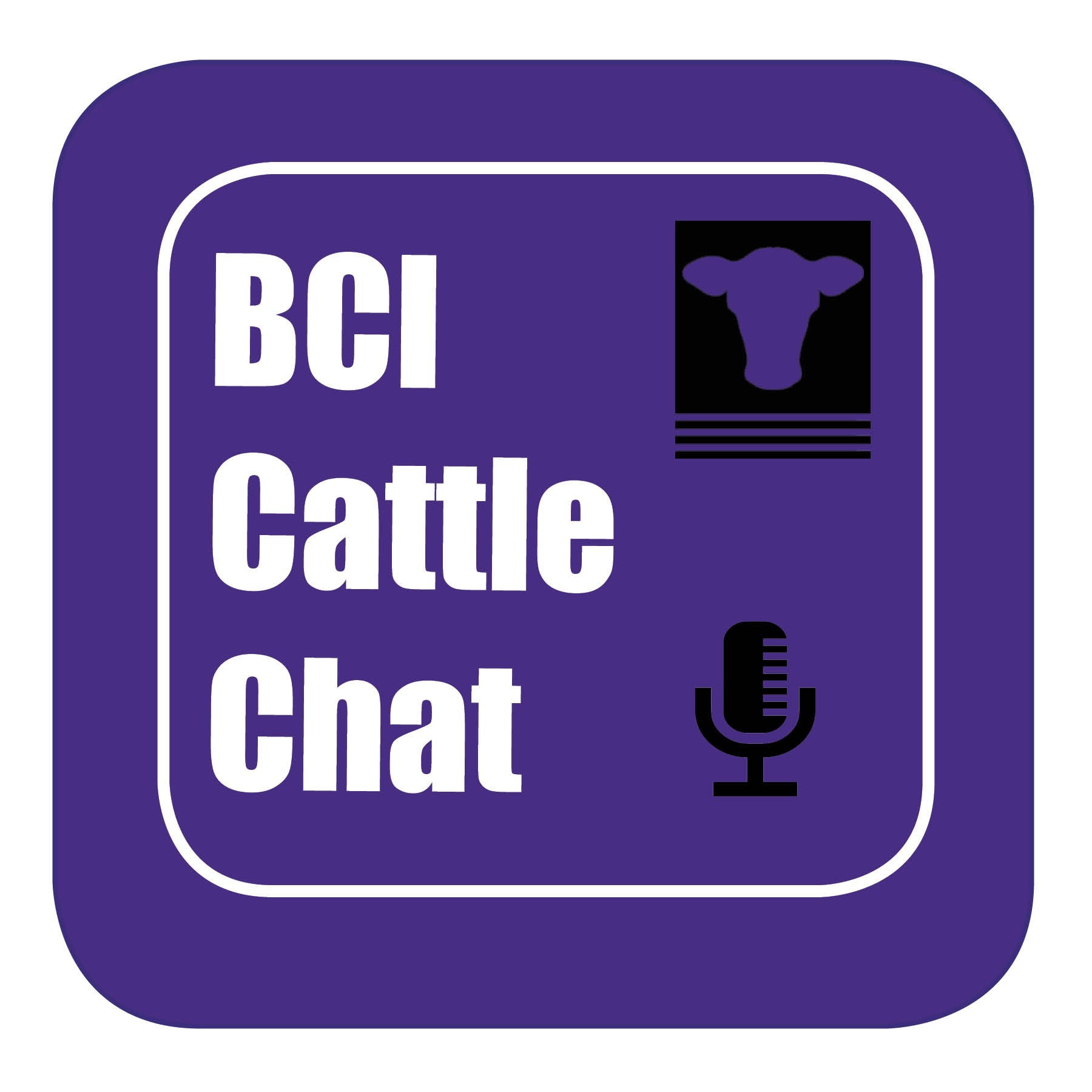 BCI Cattle Chat - Episode 34