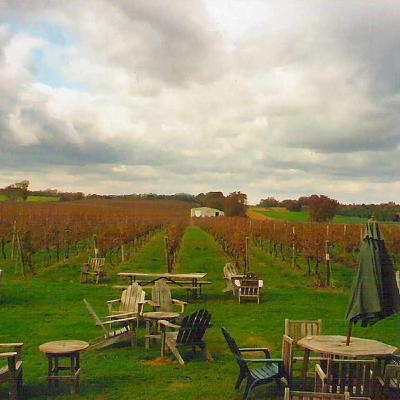 Episode 114: Long Island Wine, pt. 2