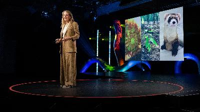 The intended consequences of helping nature thrive | Ryan Phelan