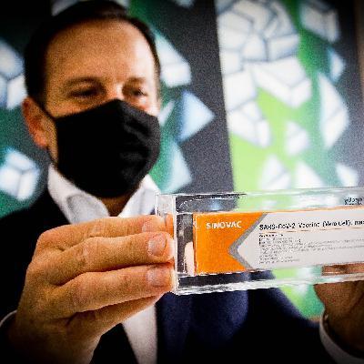 Anvisa libera importação de seis milhões de doses da CoronaVac e Ibama determina volta de brigadistas