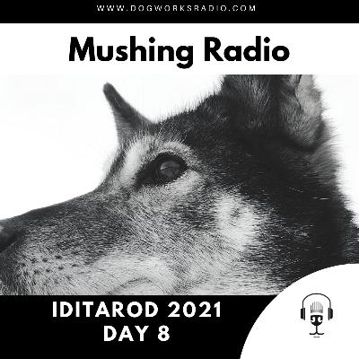 Iditarod 2021 Daily Coverage | Day 8