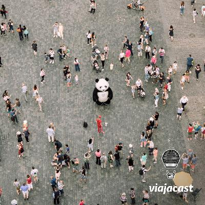 #101 Pandas pelo mundo