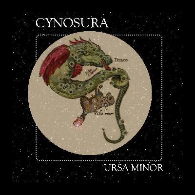 03 Cynosura: The Constellation of Ursa Minor