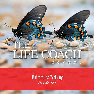 Ep #288: Butterflies Walking
