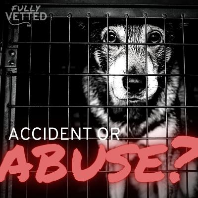 23. Accident or Abuse? How to Differentiate