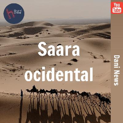 Saara Ocidental (Dani News – 01/07/2020)