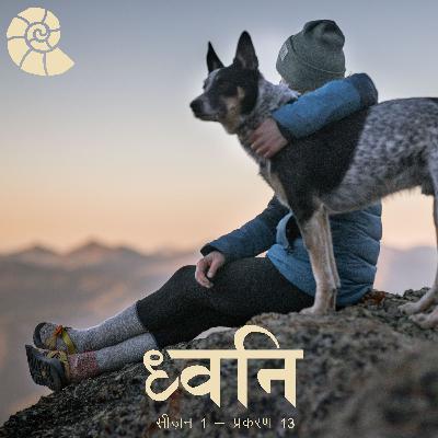 1.13 Socho - Pets kyun? [Hindi]