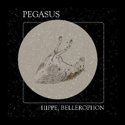 11 The Constellation of Pegasus