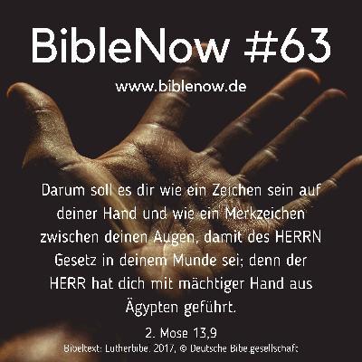 BibleNow #63: 2. Mose 12,18-13,10