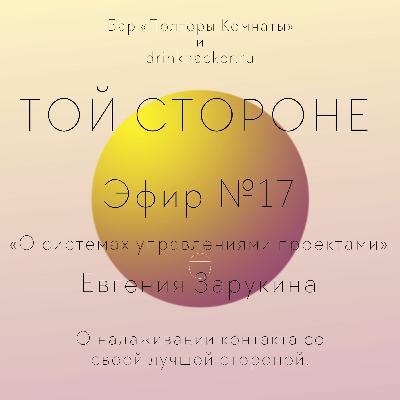ТОЙ СТОРОНЕ №17 «О системах управления проектами» Евгения Зарукина