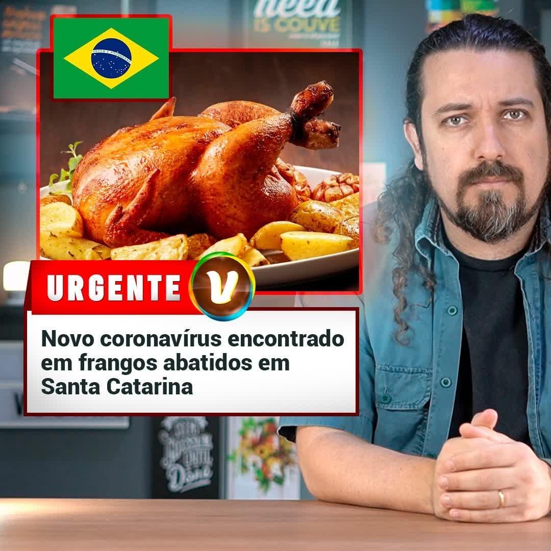URGENTE: frangos abatidos no Brasil testam positivo