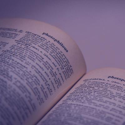 The Story Of A Fantastic Dictionary