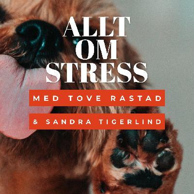 Allt om stress - Med Sandra och Tove