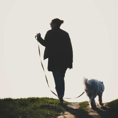 Sit Stay Listen | Kait Seyal, CPDT-KA | Door Darting Cats and Sniff Walks for Dogs | March 28, 2021