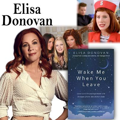"""Harvey Brownstone Interviews Elisa Donovan, Actor and Author of """"Wake Me When You Leave"""""""