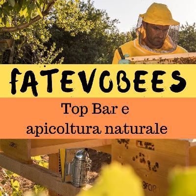 Inter-BEE-sta a Fatevobees: apicoltura naturale e top bar