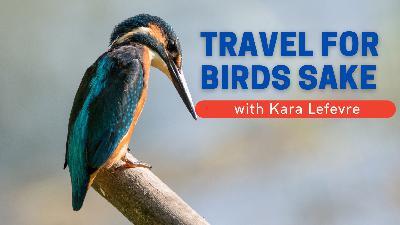 Travel For Birds Sake   With Kara Lefevre
