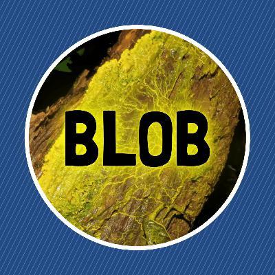 Qu'est-ce qu'un blob ?