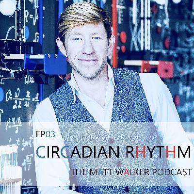 #03 Circadian Rhythms